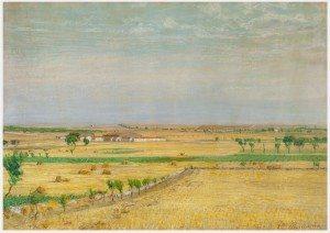 ROMANO Campo di grano